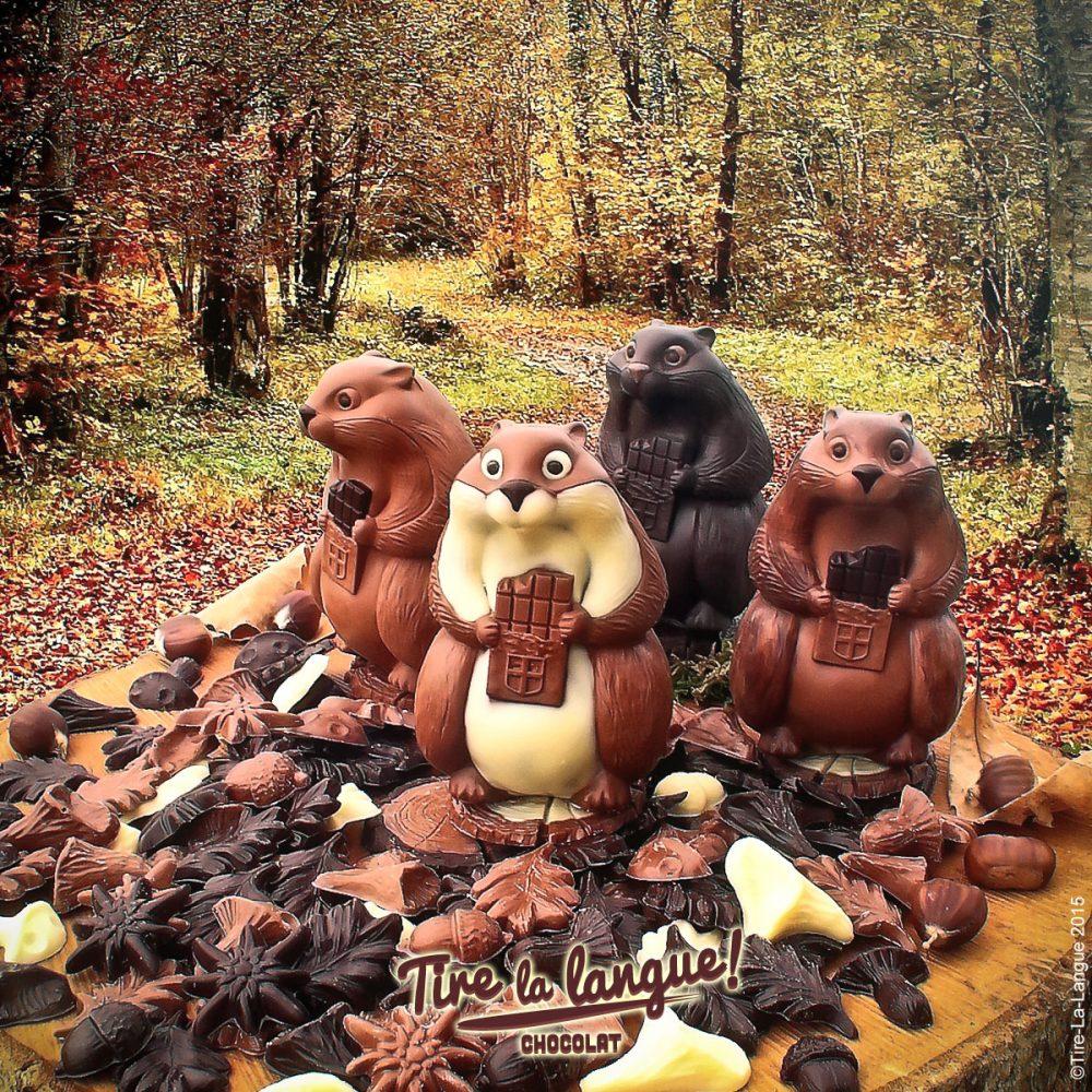 #marmotte #chocolat #tirelalangue